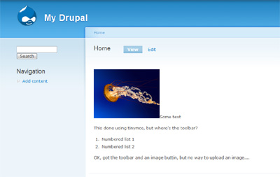 Drupal screenshot with an image