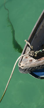 Detail of fishing boat against green sea